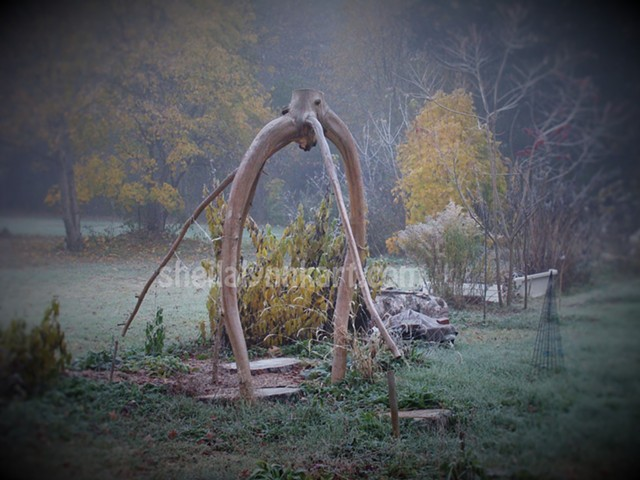 Tree Project, First Frost, Autumn Ice, Sacred Art, Organic Installation Art, Tree Art, Memorial Art, Green Matters