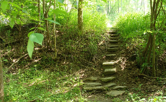 Stone Steps Photostock, Forest Path Photostock, Nature and Steps Photostock
