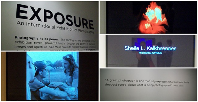exposure 2013, sheila kalkbrenner photography