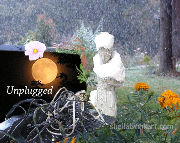 Unplugged Full Moon