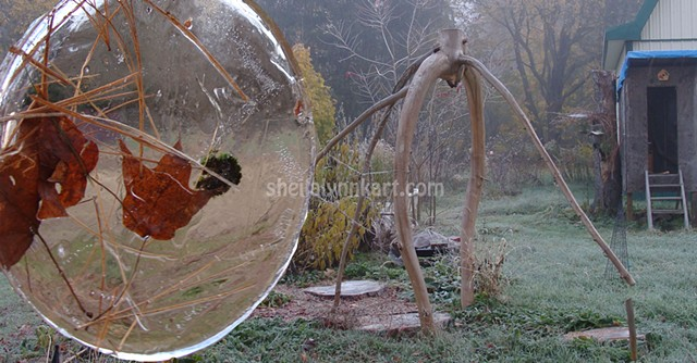 Tree Project, First Frost, Autumn Ice, Sacred Art, Organic Installation Art