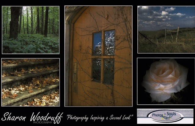 Photography Exhibit, Wellsville NY, Sharon Woodruff, Artists Among Us