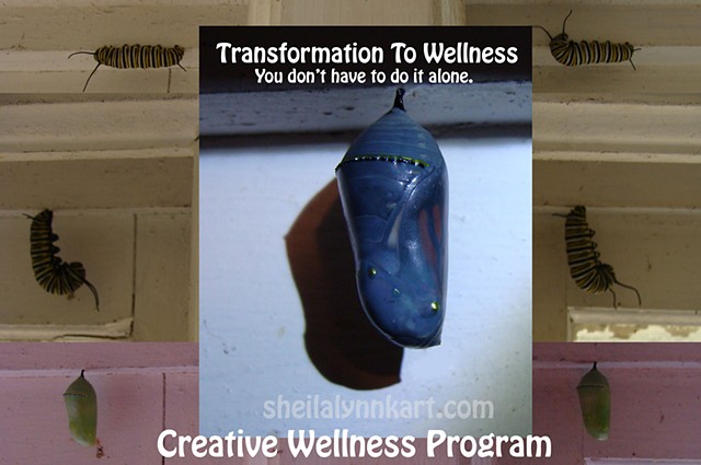 Creative Wellness Program ALL FIVE MODULES