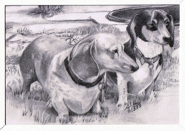 sheilalynnk art studio pet portraits, pet portraits, weiner dogs