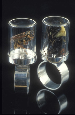 Smulovitz Herbarium Specimen Rings Vespula sp. and Bombus sp.