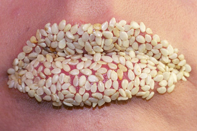 Anika Smulovitz Lips Untitled sesame seeds