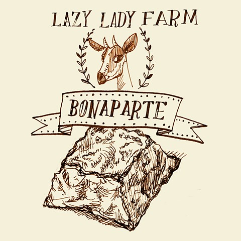 cheese illustration saxelby bonaparte lazy lady farm