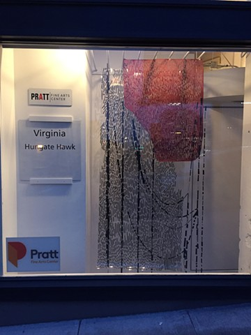 Installation at Pratt Window, May 2017