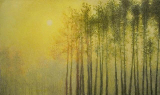 Houghton Trees (Morning)