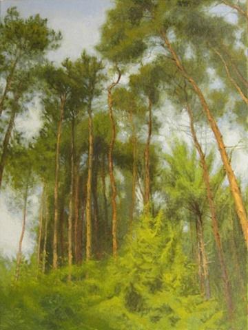 Houghton Trees (bendy)