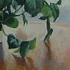 hanging plant
