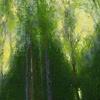 houghton trees