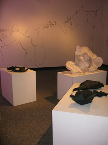 Installation View/Animalia