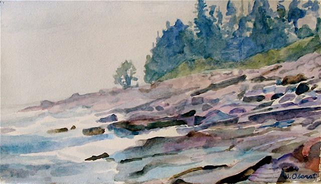 Shoreline At Pemaquid Point