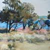 Ram Island Trees