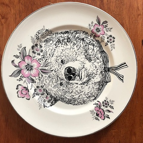 Fancy, Illustrated Plate