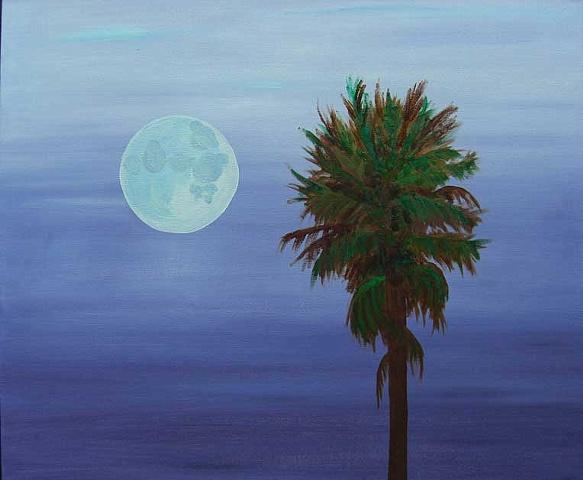 San Mateo Palm Tree