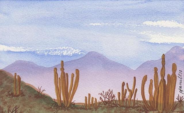 Baja California Landscape