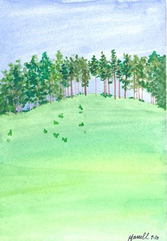 Brenda's Ridge (framed)