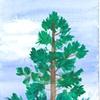 Tree in Yosemite