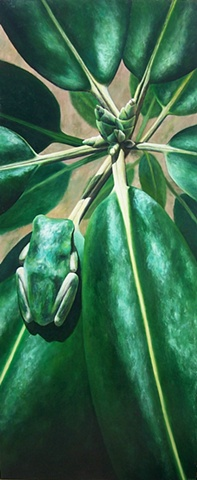 Green Frog #5