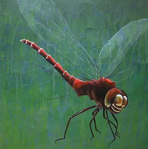 Dragonfly (step 4)