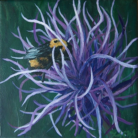 Bee and Thistle #2