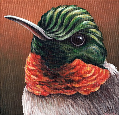 Ruby-Throated Hummingbird portrait #2