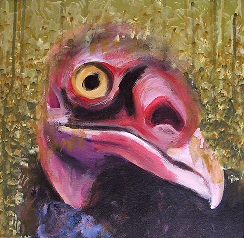 Turkey Vulture portrait (step 6)