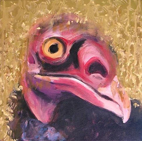 Turkey Vulture portrait (step 5)