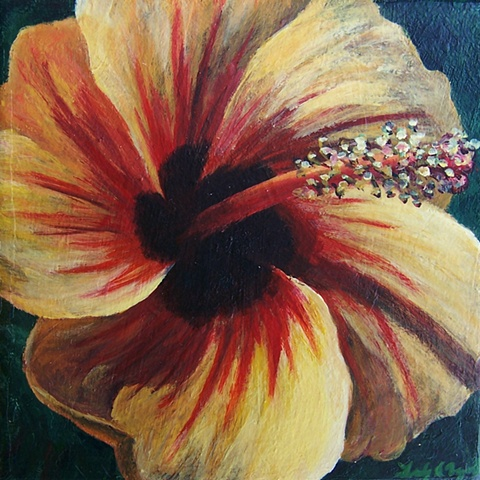 Yellow Hibiscus #2