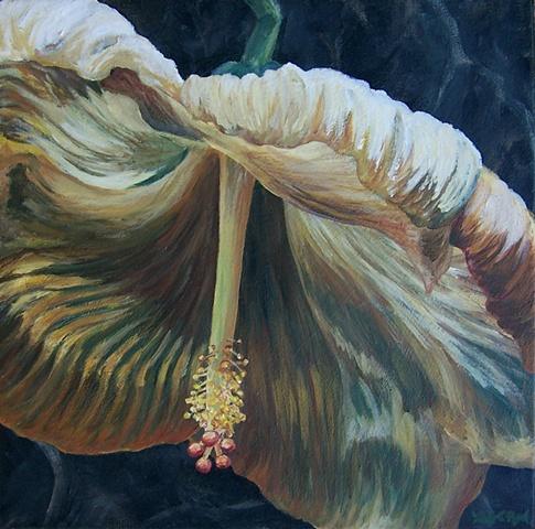 Yellow Hibiscus #3