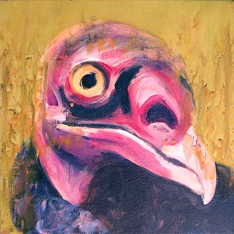 Turkey Vulture portrait (step 4)