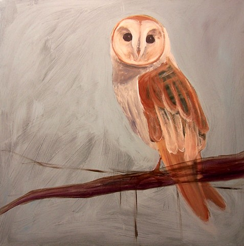 Barn Owl #2 (perched)  (step 4/9)