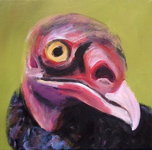 Turkey Vulture portrait (step 3)