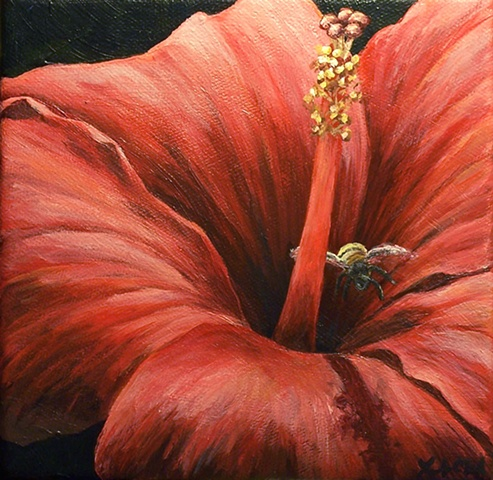 Bee and Red Hibiscus #3