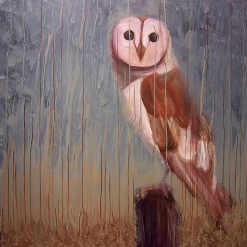 Barn Owl #2 (perched)  (step 7/9)