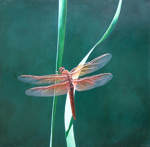 Dragonfly on Blade of Grass #6