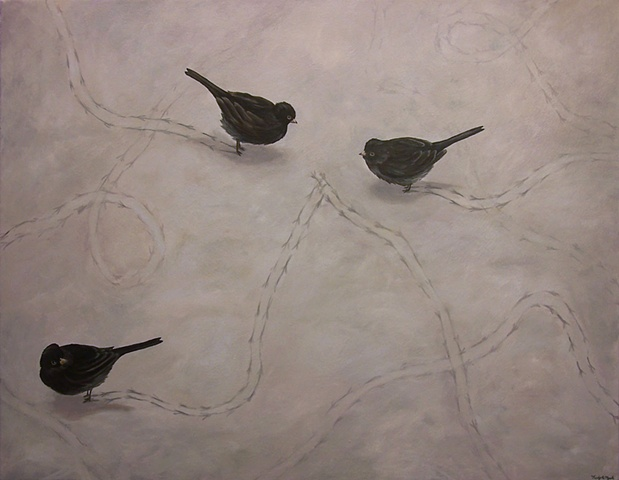 Three Juncos in Snow
