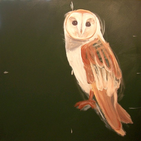 Barn Owl #2 (perched)  (step 2/9)