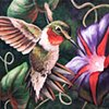 Ruby-Throated Hummingbird and Morning Glory