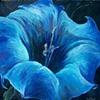 Blue Jimson Weed