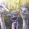 Three Emus (step 6)