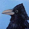 Raven Portrait #6