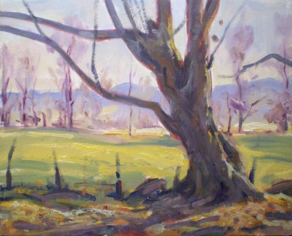 Plein Air Painting Ken Chapin