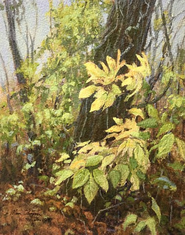 acrylic painting, Burr Oak Woods