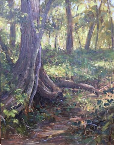 plein air painting, oil painting, Burr Oak Woods