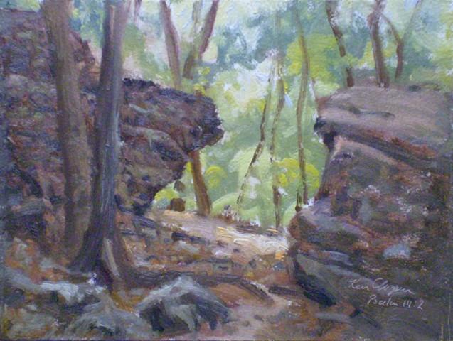 Burr Oak Woods Plein Air Painting Ken Chapin Missouri