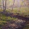 Stoney Creekbed
