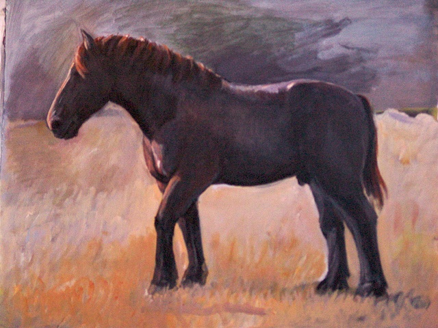 Horse Paintings and Amish Landscape